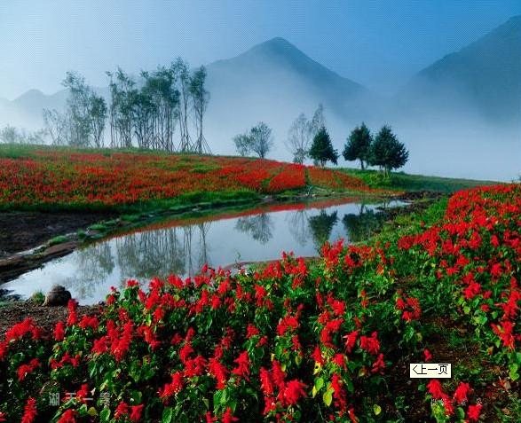 红池坝国家森林公园